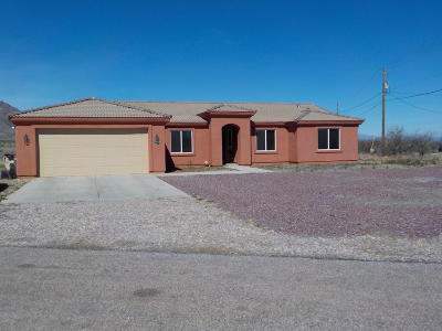 Rio Rico Single Family Home For Sale: 1414 Via Merida