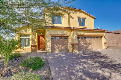 Sahuarita Single Family Home For Sale: 670 W Calle Las Tunas