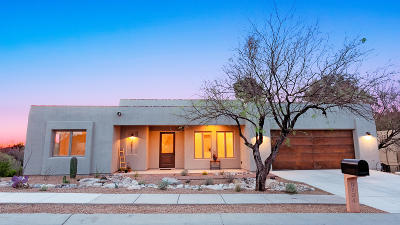 Tucson Single Family Home For Sale: 9834 E Forest Grove Loop