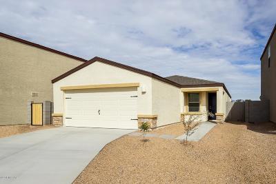 Tucson Single Family Home For Sale: 4027 E Braddock Drive