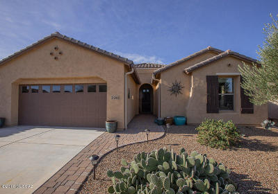 Green Valley Single Family Home For Sale: 2260 E Skywalker Way