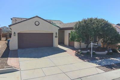 Sahuarita Single Family Home For Sale: 14247 S Via Del Farolito