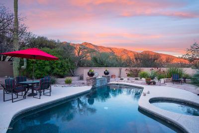 Tucson Single Family Home For Sale: 6280 E Placita El Vuelo