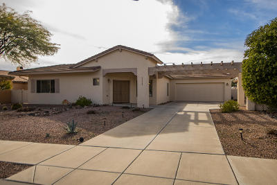 Oro Valley Single Family Home For Sale: 12923 Eagleview Drive