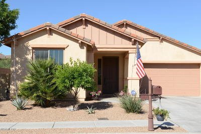 Sahuarita Single Family Home For Sale: 572 W Camino Parrilla