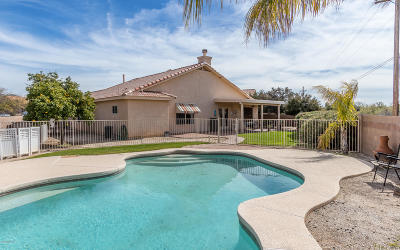 Pima County, Pinal County Single Family Home Active Contingent: 10101 E Axe Handle Court