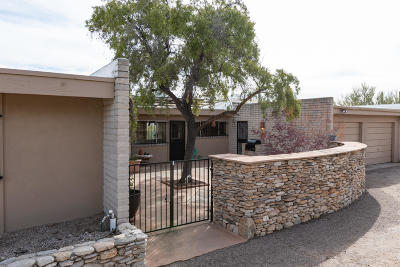 Tucson Single Family Home For Sale: 6740 N Camino Padre Isidoro