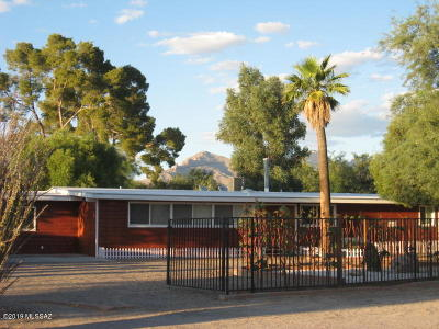 Tucson Single Family Home For Sale: 1458 W Roller Coaster Road