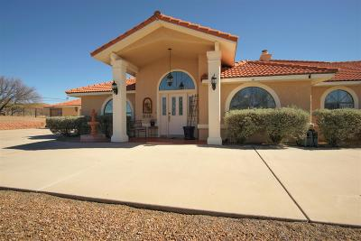 Rio Rico Single Family Home For Sale: 1249 Avenida Gloriosa