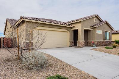 Marana Single Family Home For Sale: 11083 W Fountain View Drive W