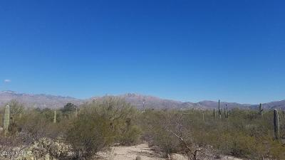 Tucson Residential Lots & Land For Sale: 750 N Ave Aguila