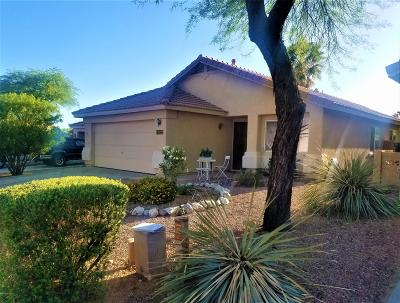 Oro Valley Single Family Home For Sale: 13227 N Hammerstone Lane