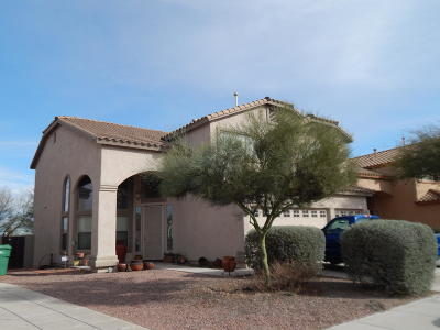 Sahuarita Single Family Home For Sale: 15365 S Camino Laguna Clara