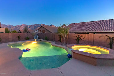 Oro Valley Single Family Home For Sale: 677 W Sonatina Lane