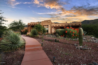 Tucson Single Family Home For Sale: 6290 E Placita El Vuelo