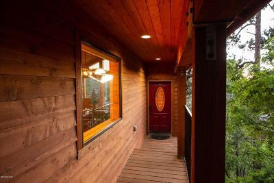 Mt. Lemmon Single Family Home For Sale: 12900 N Ajo Avenue