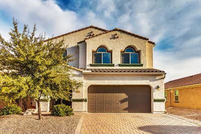 Marana Single Family Home For Sale: 8809 W Moon Spring Road