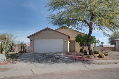 Tucson Single Family Home For Sale: 7045 E Fighting Falcon Place
