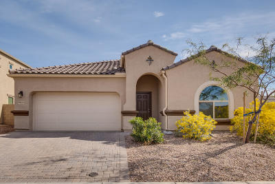 Marana Single Family Home Active Contingent: 9045 W Rolling Springs Drive
