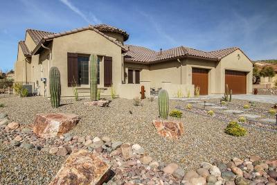 Saddlebrooke Single Family Home Active Contingent: 35902 S Desert Sun Drive