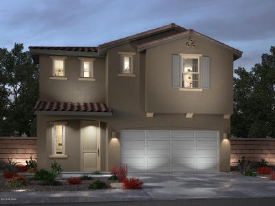 Tucson Single Family Home For Sale: 6794 E Via Rancho Rosario