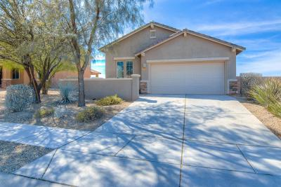 Single Family Home For Sale: 7456 S Dark Sands Drive