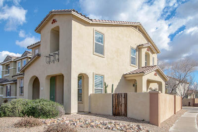 Sahuarita Single Family Home Active Contingent: 20 W Paseo Celestial
