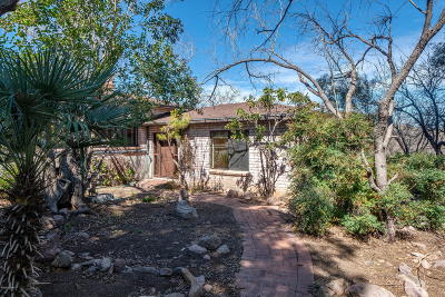 Tubac Single Family Home For Sale: 6 Boquillas Ct