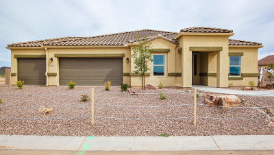 Marana Single Family Home For Sale: 8941 W Airdale Road