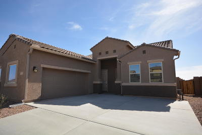 Marana Single Family Home For Sale: 9845 N Buzzing Bee Trail
