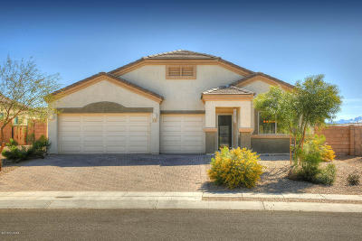 Pima County, Pinal County Single Family Home For Sale: 217 W Andrew Potter Street