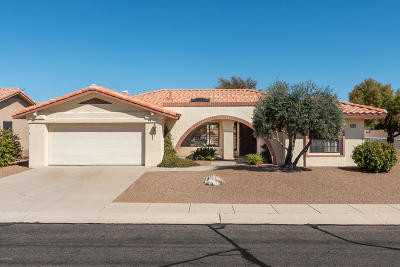 Oro Valley Single Family Home For Sale: 1043 E Rising Sun Drive