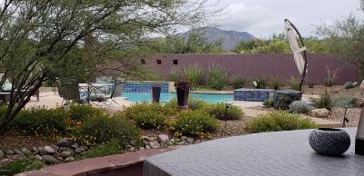 Vail Single Family Home Active Contingent: 16861 S Ocotillo View Road