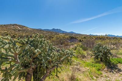 Saddlebrooke, Saddlebrooke Ranch Single Family Home For Sale: 38237 S Arroyo Way