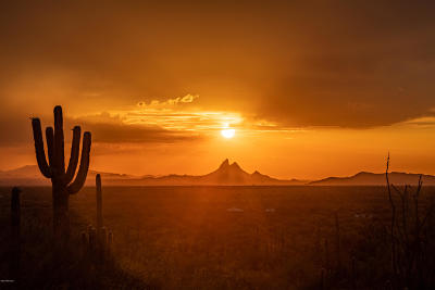 Pima County Residential Lots & Land For Sale: 37420 S Carpenter Ranch Road