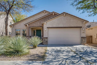 Oro Valley Single Family Home For Sale: 1183 W Doolan Drive