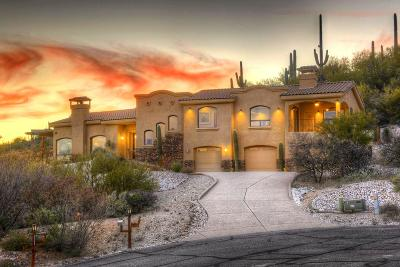 Pima County, Pinal County Single Family Home For Sale: 3879 N River Gate Place