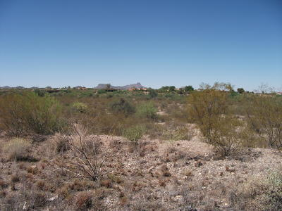 Tucson Residential Lots & Land For Sale: 6050 N Shaded Moon Court N