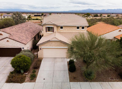Sahuarita Single Family Home For Sale: 14435 S Avenida Castano