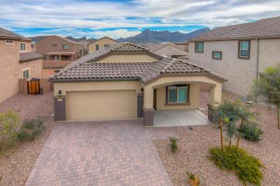 Marana Single Family Home For Sale: 9049 W Birchover Drive