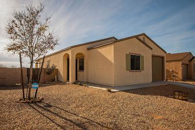Pima County Single Family Home Active Contingent: 7060 S Red Maids Drive