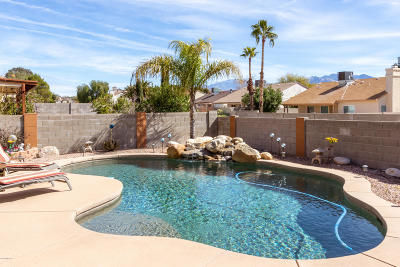 Tucson Single Family Home Active Contingent: 5125 W Nighthawk Way