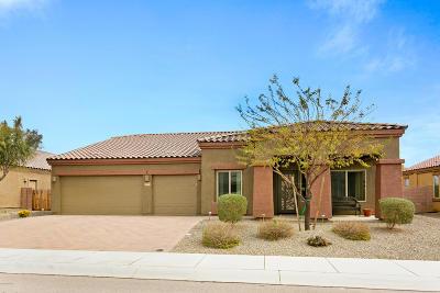 Marana Single Family Home For Sale: 14090 N Gila River Avenue