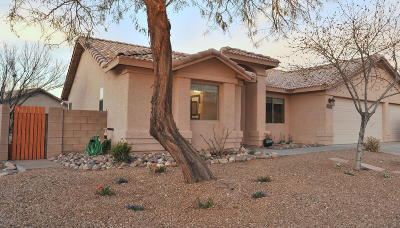 Single Family Home Active Contingent: 10651 E Mackenzie Willow Place