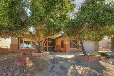 Green Valley Single Family Home For Sale: 4603 S Camino Del Tejon