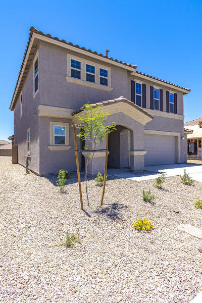 Marana Single Family Home For Sale: 11527 W Boll Bloom Drive