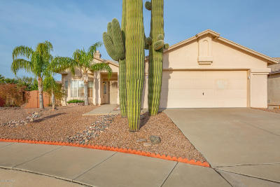 Tucson Single Family Home Active Contingent: 8879 N Soft Winds Drive