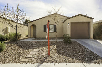 Pima County Single Family Home For Sale: 7006 S Red Maids Drive