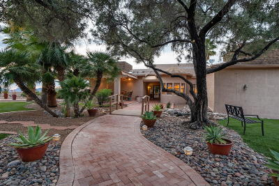 Pima County, Pinal County Single Family Home For Sale: 5040 N Rock Canyon Road
