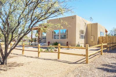 Tucson Single Family Home For Sale: 1664 N Jones Boulevard